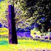 Park, Bremen, Fotografie, Landschaft