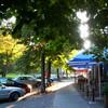 Straßencafé, Halle, Saale, Morgensonne