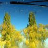 Fotografie, Saale, Kunstfotografie, Fluss