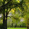 Park, Kunstfotografie, Halle, Parkanlage