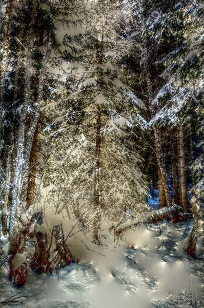 Natur, Fotografie, Ausblick, Schnee, Winter, Frost