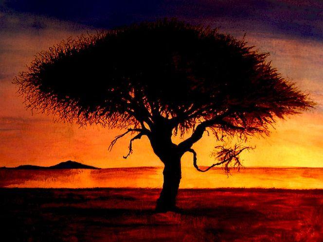 Orange, Baum, Gelb, Afrika, Sonnenuntergang, Gemälde
