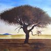 Baum, Afrika, Himmel, Natur