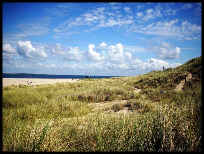 Natur, Sommer, Meer, Dünen, Fotografie
