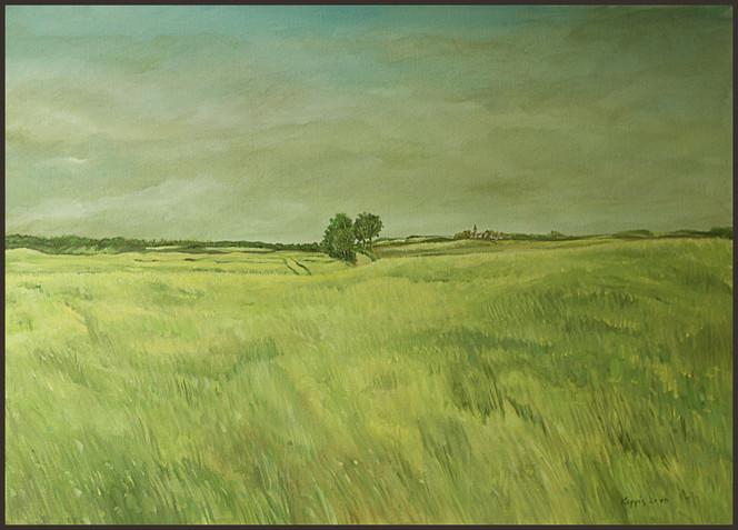 Landschaft, Wiese, Malerei, Mecklenburg