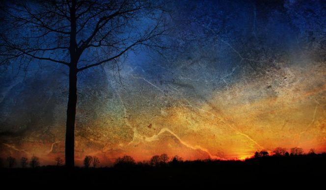 Baum, Licht, Stimmung, Blitz, Natur, Digitale kunst