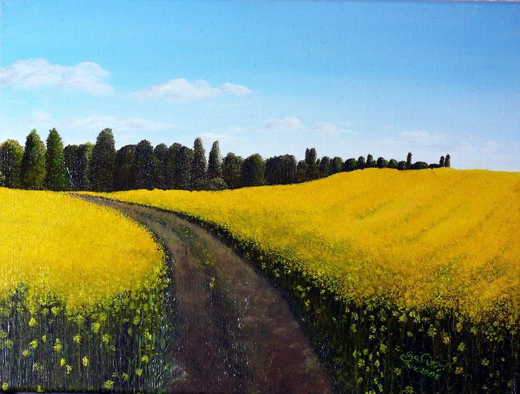 Rapsfeld Landschaft 214 Lmalerei Malerei Romantik Von