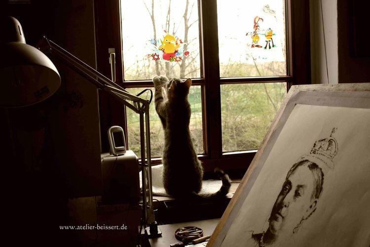 Atelier, Malplatte, Katze, Jagd, Historie, Fotografie