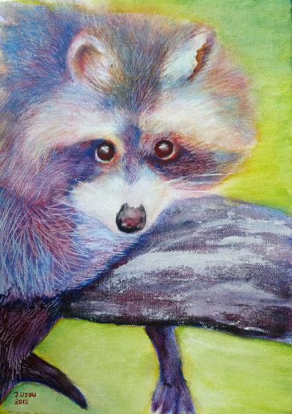 Figural, Tiere, Natur waschbär, Acrylmalerei, Malerei, Waschbär