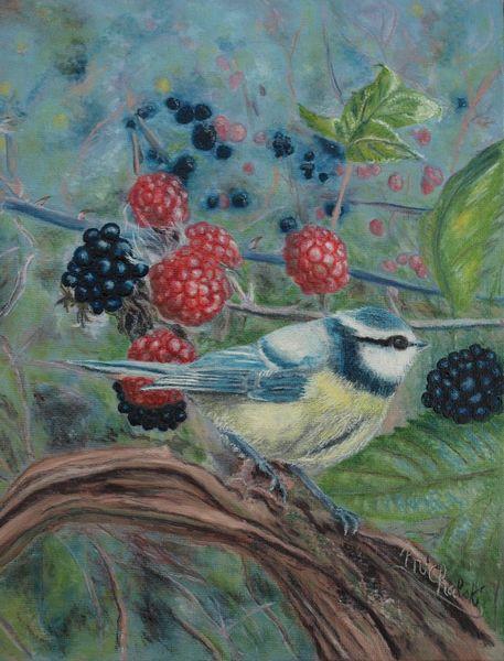 Vogel, Meise, Brombeere, Malerei, Tiere, Blaumeise