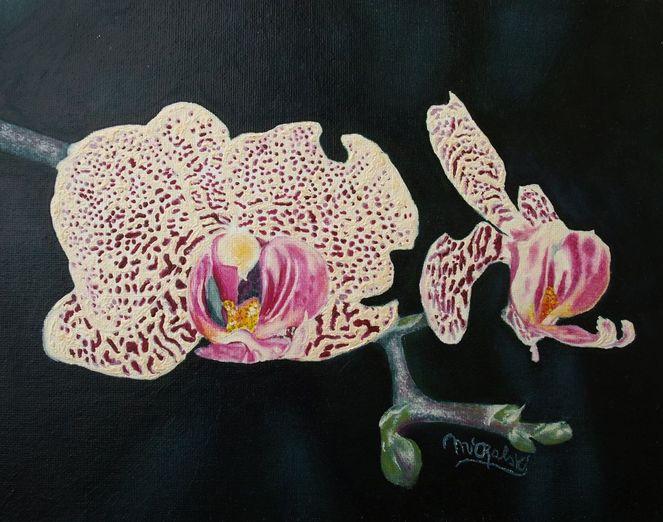 Blüte, Orchidee, Blumen, Malerei, Pflanzen
