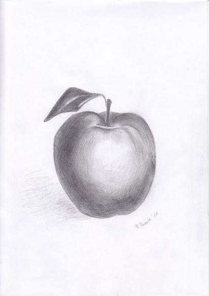 Apfel, Bleistiftzeichnung, Zeichnung, Zeichnungen