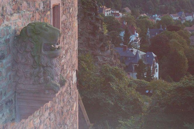 Burg, Fresko, Heidelberg, Schloss, Fotografie, Natur