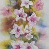 Aquarellmalerei, Blumen, Aquarell,