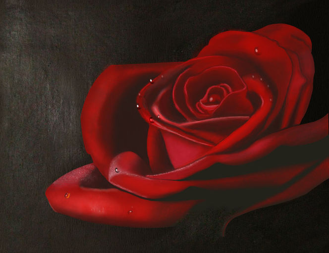 Digital, Rot, Blumen, Liebe, Rose, Digitale kunst