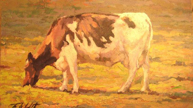 Kuh bunt, Malerei, Tiere, Kuh