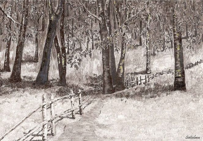 Landschaft, Wald, Baum, Zeichnungen