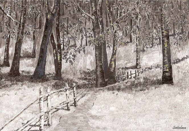 Zaun, Baum, Wald, Weg, Zeichnungen