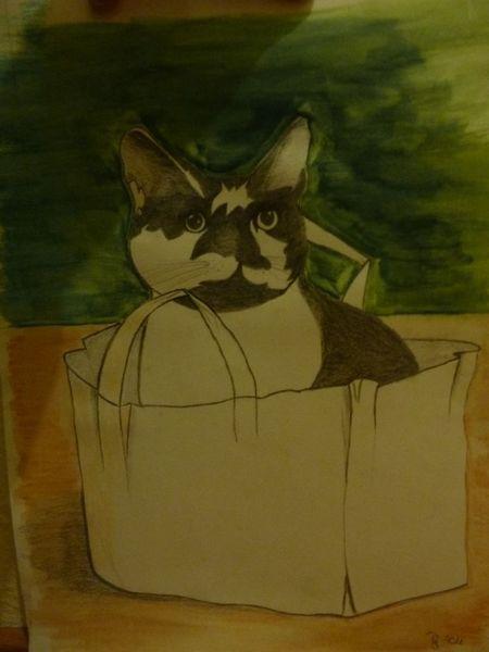 Kater, Malerei, Tiere, Katze