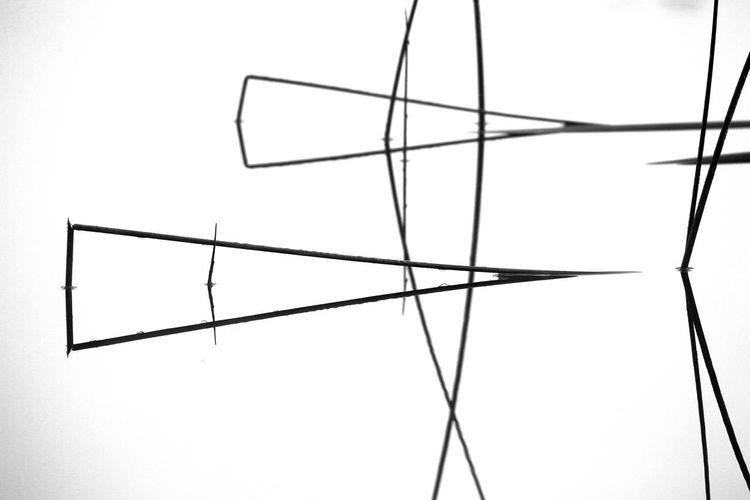 Binsen, Wasser, Dreiecke, Spiegelung, Fotografie