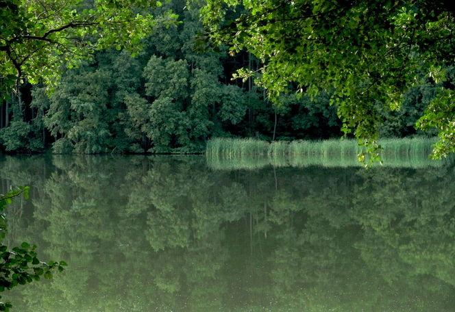 See, Teltow, Ufer, Fläming, Krumme lanke, Rangsdorf