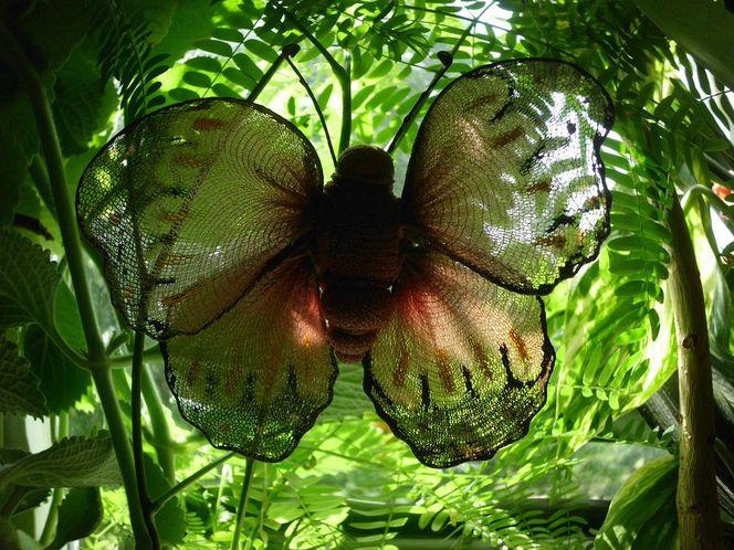Schmetterling, Spott, Tschernobyl, Et cetera, Outsider art, Fußpilz