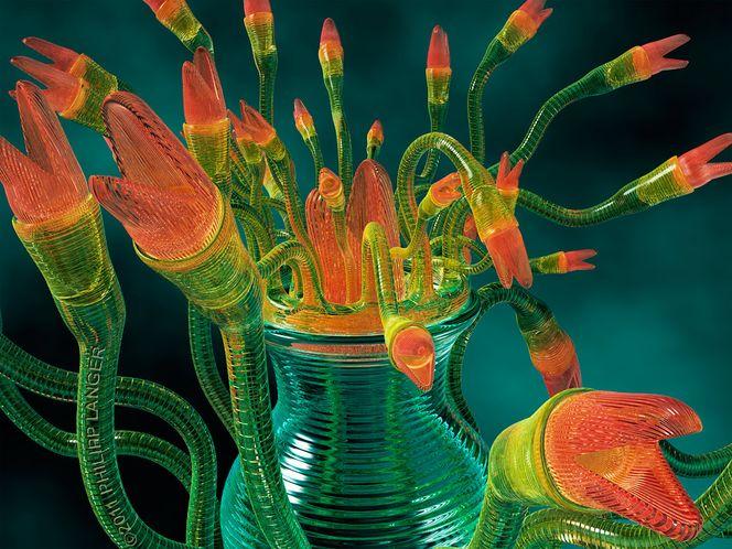 Grün, Phantastik, Rot, Visualisierungen, Schlange, Maul