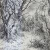 Landschaft, Wald, Romantik, Dunkel