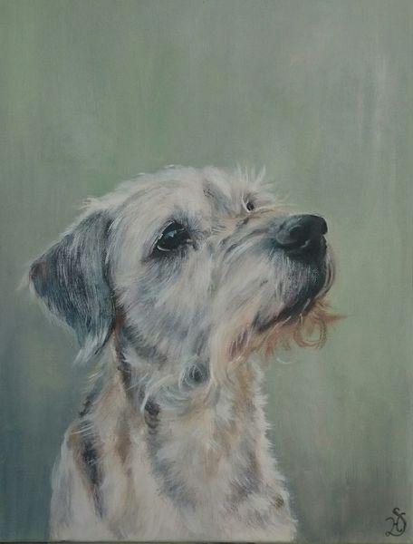 Hund, Hundeportrait, Terrier, Borderterrier, Portrait, Malerei