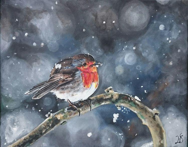 gerti im winter  winter vogel schnee rotkehlchen von