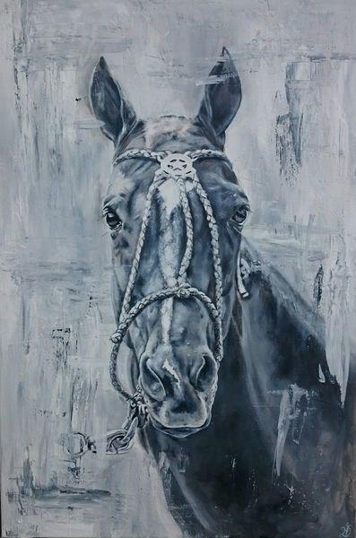 Pferde, Portrait, Pony, Polo, Halfter, Malerei