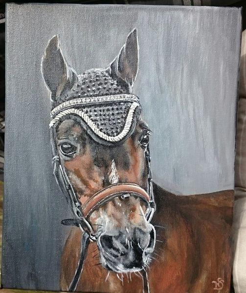 Pferde, Pony, Portrait, Fliegenmütze, Malerei