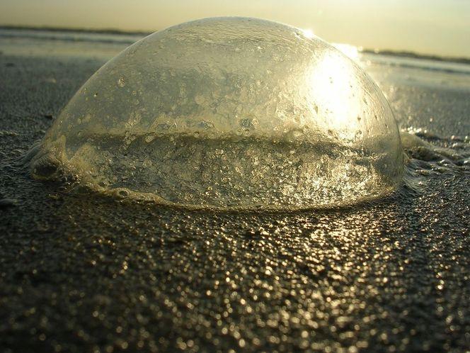 Meer, Sonnenuntergang, De koog, Nordholland, Blase, Strand