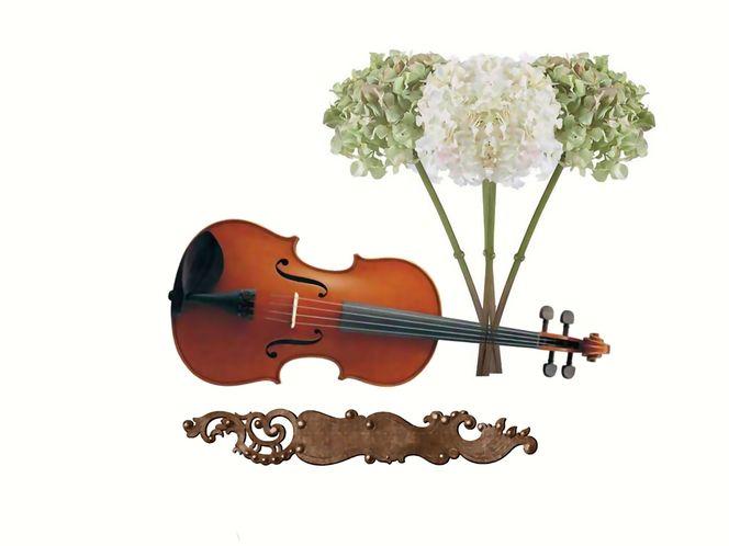 Mixed media, Bekannt, Geige, Streichorchester, Vitrine, Berühmt