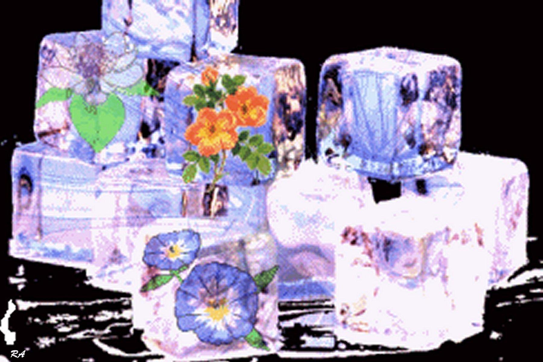 Bild: Eisblumen, Kalter sommer, Eis, Eiswürfel von ...