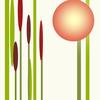 Gelb, Teich, Pflanzen, Rot