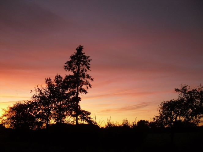 Fotografie, Leuchten, Sonne, Himmel, Herbst, Natur