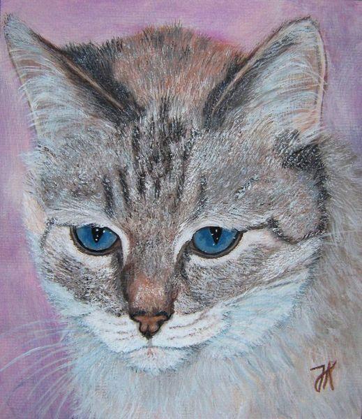 Katze, Kater, Hell, Blaue augen, Stichwort, Malerei