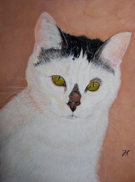 Schwarz weiß, Batida, Katze, Stichwort, Grüne augen, Malerei