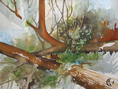 Aquarellmalerei, Tiermalerei, Malerei, Bau, Fuchs