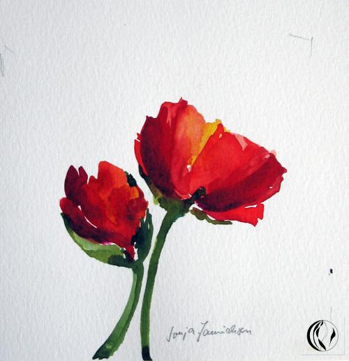 Mohn 2 Meer Mohn Blumen Aquarellmalerei Von Sonja Jannichsen