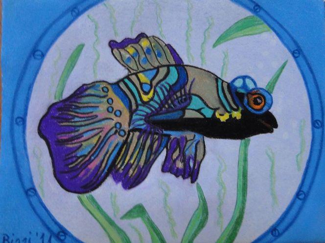 Aquariumsfisch, Fisch, Augen, Hervorstehende, Blau, Malerei