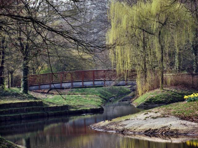 Fotografie, Park, Frühlingsanfang