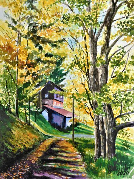 Odenwald, Laub, Weg, Ernsttal, Bunt, Herbst