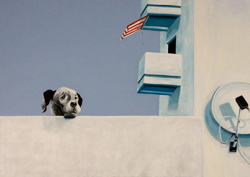 bild hund terrasse markise satellitensch ssel von susanne memmert bei kunstnet. Black Bedroom Furniture Sets. Home Design Ideas