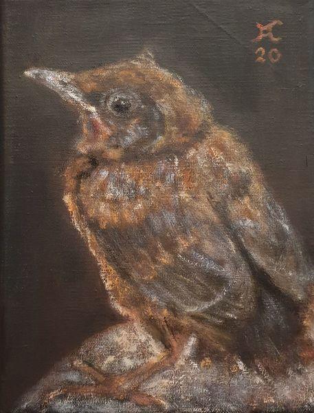 Jungvogel, Malerei,