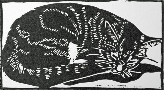 Linolschnitt, Hochdruck, Schwarz weiß, Katze, Druckgrafik