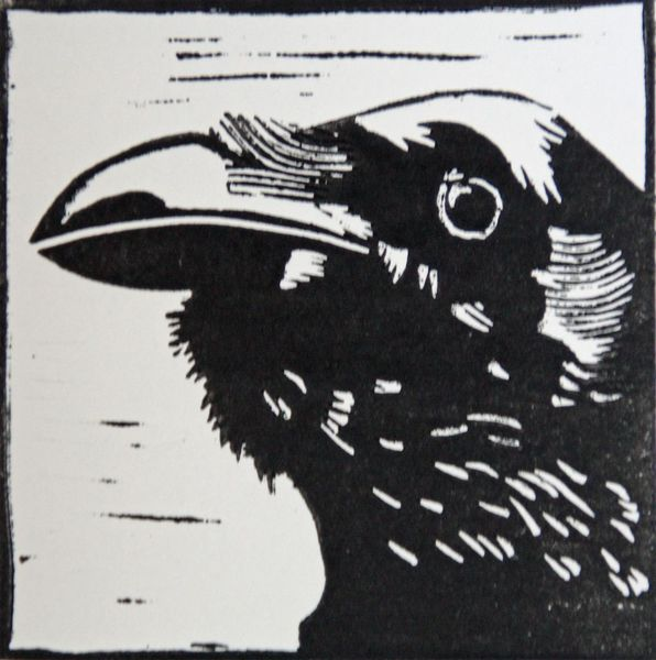 Linolschnitt, Schwarz weiß, Hochdruck, Linoldruck, Vogel, Rabe