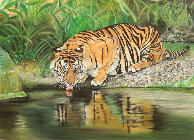 Tierwelt, Pastellmalerei, Tiger, Tiermalerei, Katze, Tierportrait