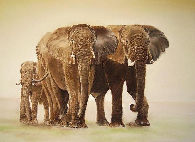 Tierwelt, Tiere, Elefant, Afrika, Tiermalerei, Malerei